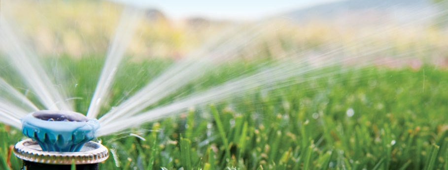 Water Pump And Irrigation Specialist